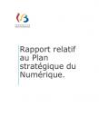 Rapport relatif au plan stratégique du numérique pour l'année 2020 -1