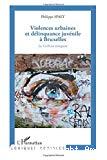 Violences urbaines et délinquance juvénile à Bruxelles : les 12-20 ans témoignent