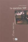 La question SDF - Critique d'une action publique