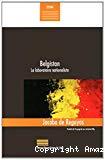 Belgistan : le laboratoire nationaliste